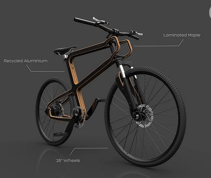 Boske Wooden Bike (3).jpg