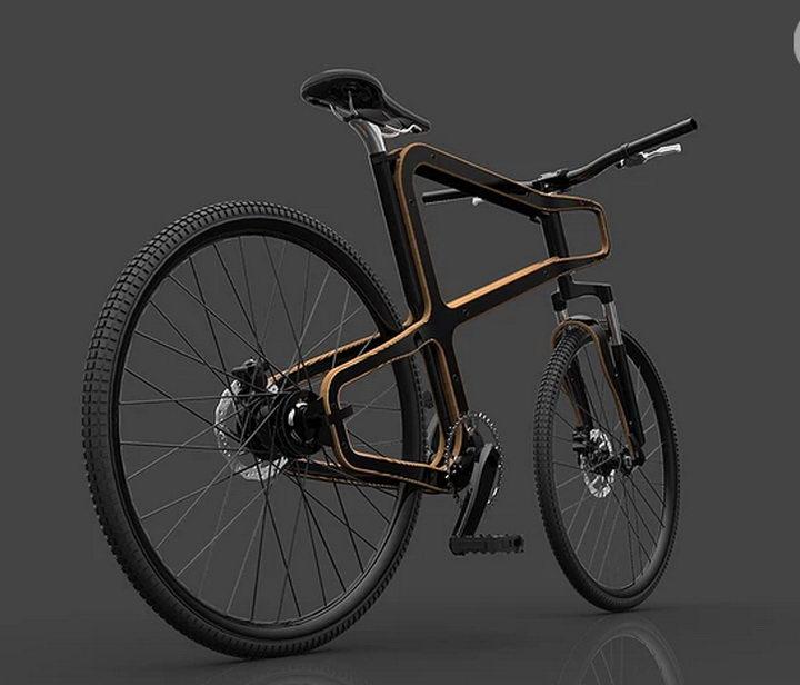 Boske Wooden Bike (2).jpg